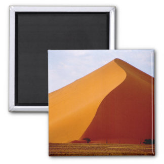 Africa, Namibia, Naukluft National Park, 2 Square Magnet