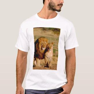 Africa, Namibia, Okonjima. Lion & lioness T-Shirt