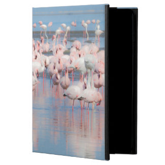 Africa, Namibia, Walvis Bay iPad Air Case