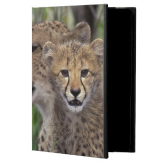 Africa, South Africa, Phinda Preserve. Cheetah iPad Air Cases