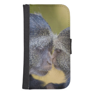 Africa. Tanzania. Blue Monkey mother with young Phone Wallet Case