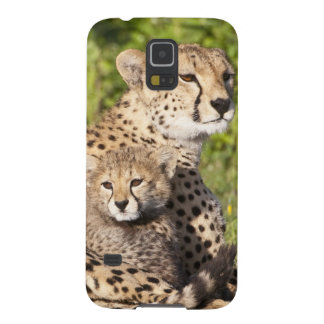 Africa. Tanzania. Cheetah mother and cubs 2 Galaxy S5 Covers