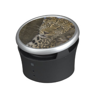 Africa. Tanzania. Leopard in tree at Serengeti Bluetooth Speaker