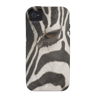 Africa, Tanzania, Ngorongoro Conservation Area iPhone 4 Cover