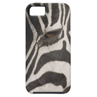 'Africa, Tanzania, Ngorongoro Conservation Area' Case For The iPhone 5