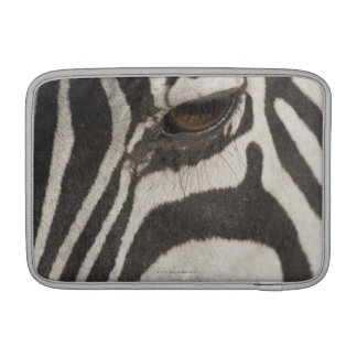 Africa, Tanzania, Ngorongoro Conservation Area Sleeves For MacBook Air