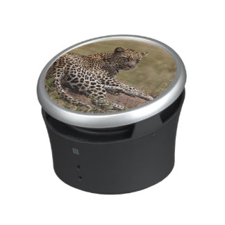 Africa, Tanzania, Serengeti. Leopard Speaker