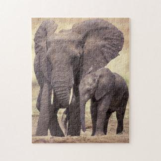 Africa, Tanzania, Tarangire National Park Puzzles