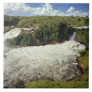 Africa, Uganda, Murchison Falls NP. The frothy Ceramic Tiles