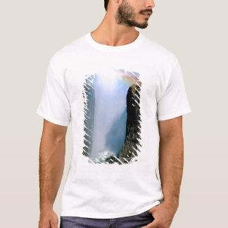 Africa, Zambia, Victoria Falls National Park. T-Shirt