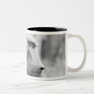African baboon Two-Tone coffee mug