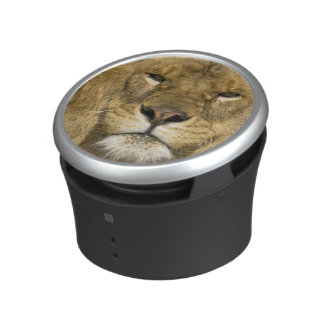 African Barbary Lion, Panthera leo leo, one of Bluetooth Speaker