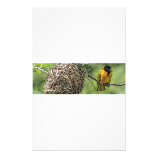 African Bird and Her Grass Nest Stationery