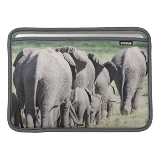 African Bush Elephant (Loxodonta Africana) 4 MacBook Sleeves