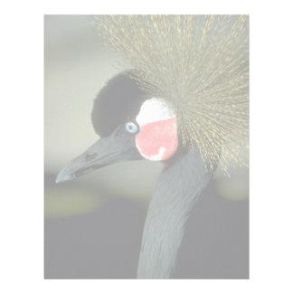 African crowned crane, striking head-dress customized letterhead