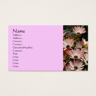 African Daisies Flower Photography Business Card