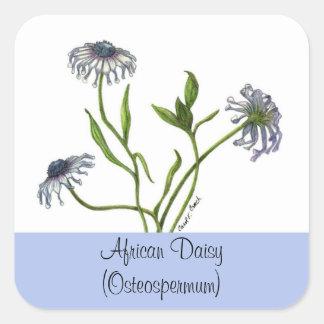 African Daisy Botanical Seal