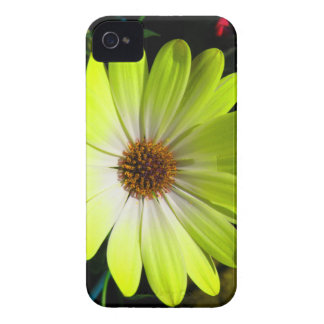 African Daisy Fluorescent Yellow Blackberry Bold C iPhone 4 Case-Mate Case