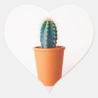african-daisy heart sticker
