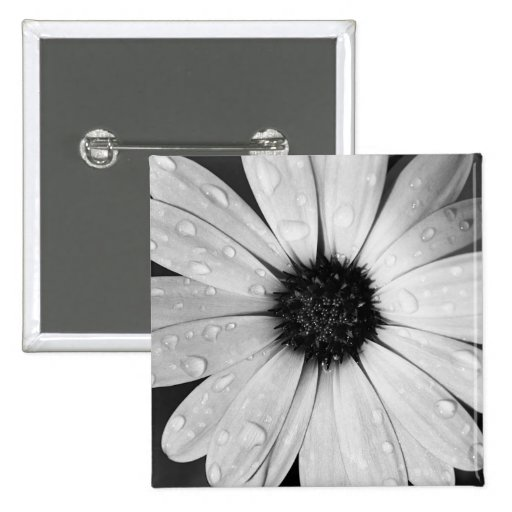 African Daisy in Black and White Pin