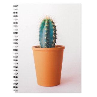 african-daisy notebook