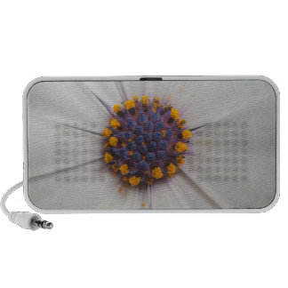 African Daisy Photography iPod Speaker