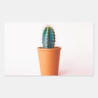 african-daisy sticker