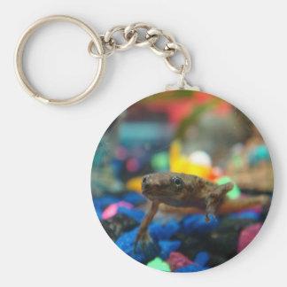 African Dwarf Frog Basic Round Button Keychain