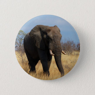 African Elephant 2 Inch Round Button