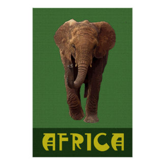 African Elephant 36 x 24 Poster