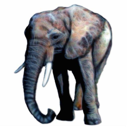 African Elephant 3D Photo Sculpture Gift
