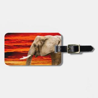 African Elephant - Address Luggage Tag