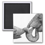 African Elephant and Baby Magnet