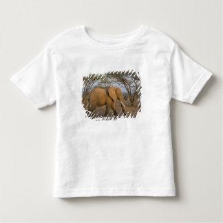 African Elephant at Samburu NP, Kenya. Toddler T-shirt