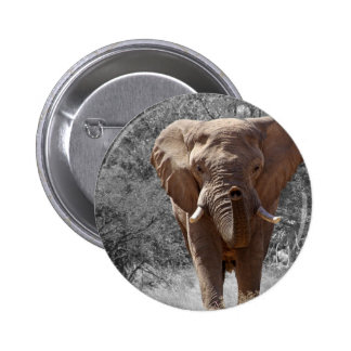 African Elephant Buttons
