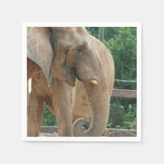 African Elephant Head Trunk Disposable Napkin