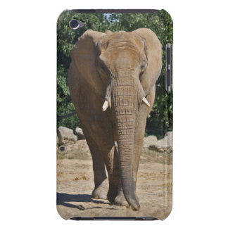 African Elephant iPod Touch Case