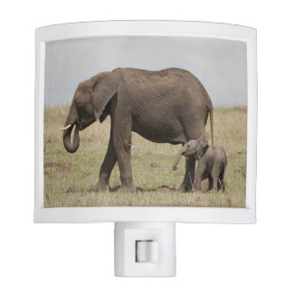African Elephant mother with baby walking Nite Lites