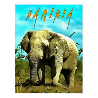 African elephant, Namibia Postcard