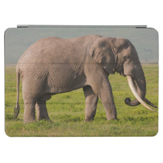African Elephant, Ngorongoro Conservation Area iPad Air Cover