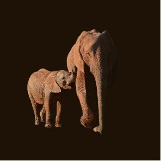 African Elephant Photosculpture Standing Photo Sculpture