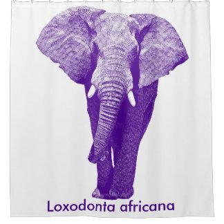 African Elephant Walking: Purple/Grape