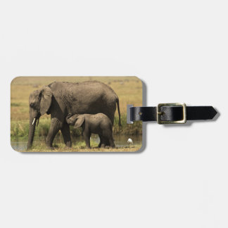 African Elephants at water pool Luggage Tag