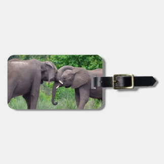 African Elephants Interacting Luggage Tag