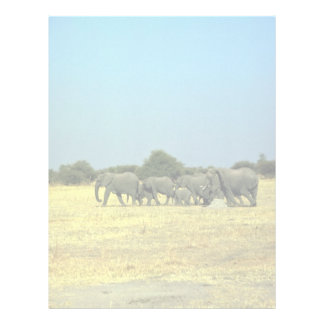 African Elephants Customized Letterhead