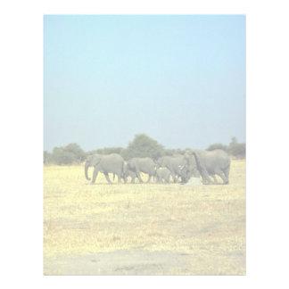 African Elephants Letterhead Template