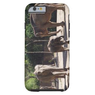 African Elephants Tough iPhone 6 Case