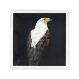 African fish eagle acrylic tray