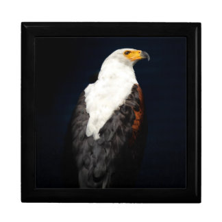 African fish eagle gift box