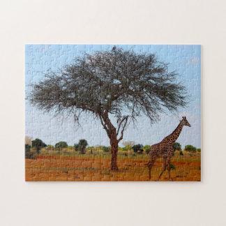 African Giraffe. Jigsaw Puzzle